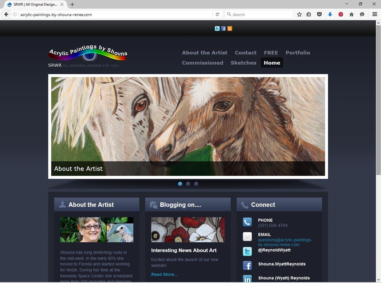Orlando Website Design Sample 12